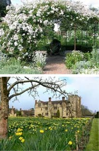 Gardens of Kent tour with Blue Badge Guide Sue Jackson